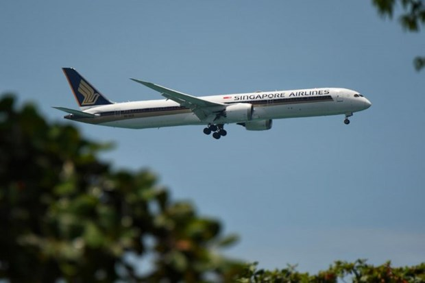 Singapore Airlines to gradually increase flights hinh anh 1