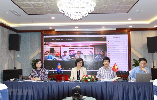 Vietnam holds national consultation on promoting social work in ASEAN hinh anh 1