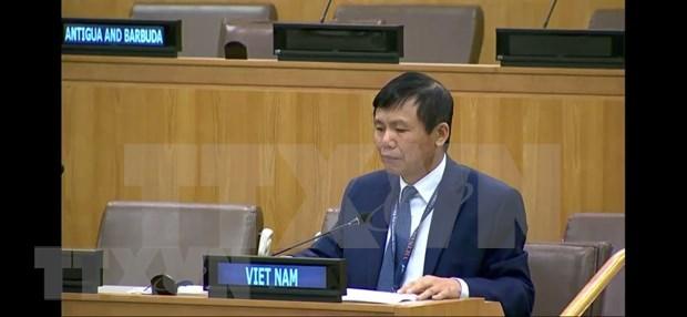 Int'l cooperation, solidarity key to COVID-19 response: Ambassador hinh anh 1