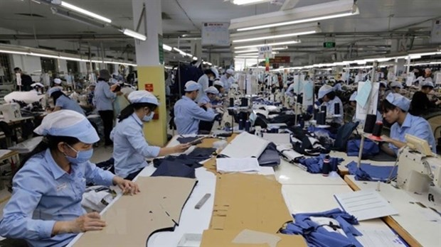 Garment sector urged to embrace digital transformation hinh anh 1