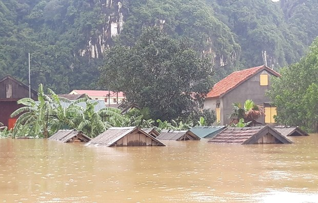 Natural disasters cause economic losses of over 215 million USD this year hinh anh 1