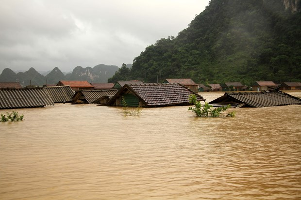 Central steering committee urges continued actions in response to floods in central region hinh anh 1