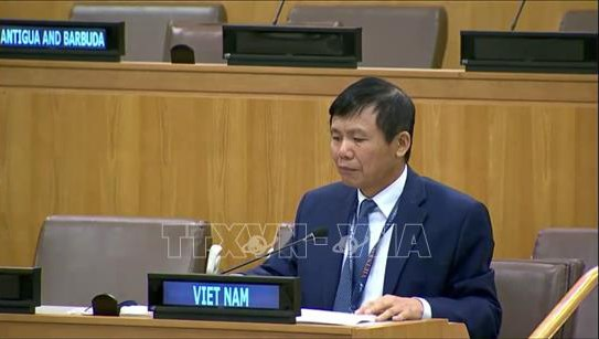 ASEAN backs int'l efforts in non-proliferation of weapons of mass destruction hinh anh 1