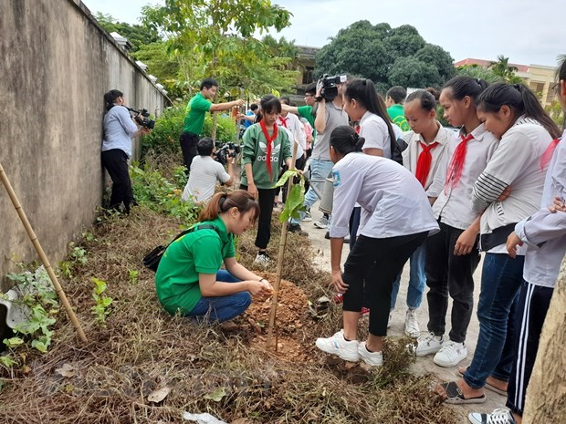 Campaign to green up Hanoi with 4,000 trees hinh anh 1