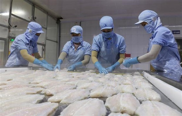 Fisheries export slump eases in September, signs of recovery seen hinh anh 1