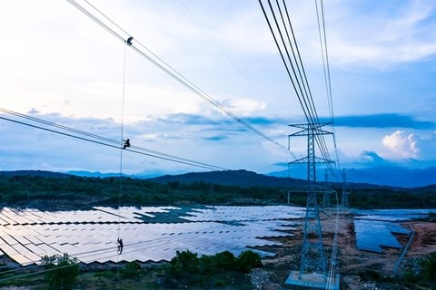 Trung Nam Group inaugurates 12-trillion-VND solar power project hinh anh 1