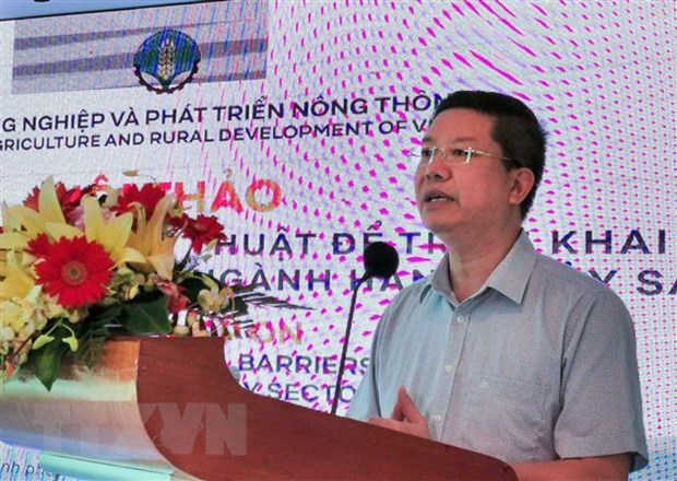 Vietnam's seafood exports to EU predicted to down 20 percent hinh anh 1