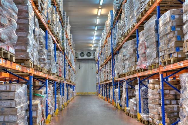 Gov't support needed for investment in cold storage hinh anh 1