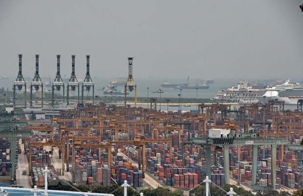 Singapore's non-oil exports grow slower than expected in September hinh anh 1