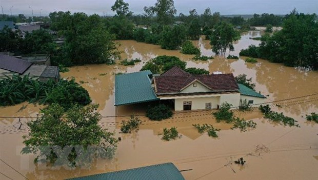 Vietnamese in Czech, Poland raise fund to help flood victims hinh anh 1