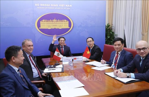 Vietnam, Peru hold fourth deputy foreign ministerial-level political consultation hinh anh 1