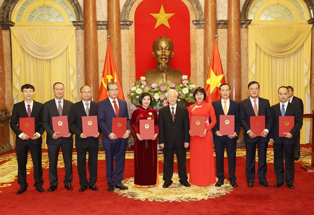Top leader presents appointment decisions to new ambassadors hinh anh 1