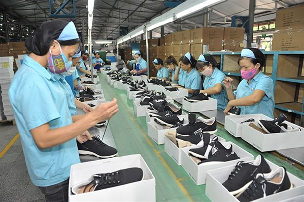 Leather and footwear on course for strong recovery: LEFASO hinh anh 1
