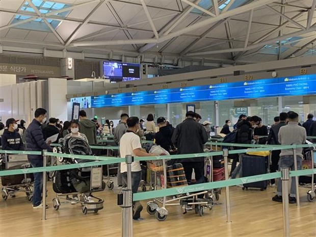 Nearly 450 Vietnamese citizens flown home from RoK hinh anh 1