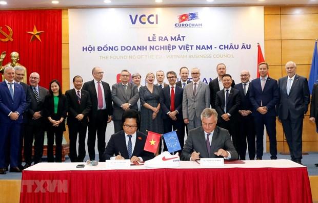 EU-Vietnam Business Council debuts hinh anh 1