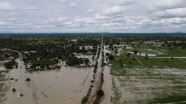 Death toll from flooding in Cambodia rises to 39 hinh anh 1