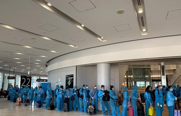 More Vietnamese citizens from abroad return home hinh anh 1