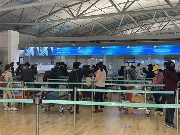 More than 350 Vietnamese citizens return home from Canada, RoK hinh anh 1
