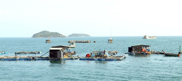 Vietnam seeks sustainable development of fisheries hinh anh 1