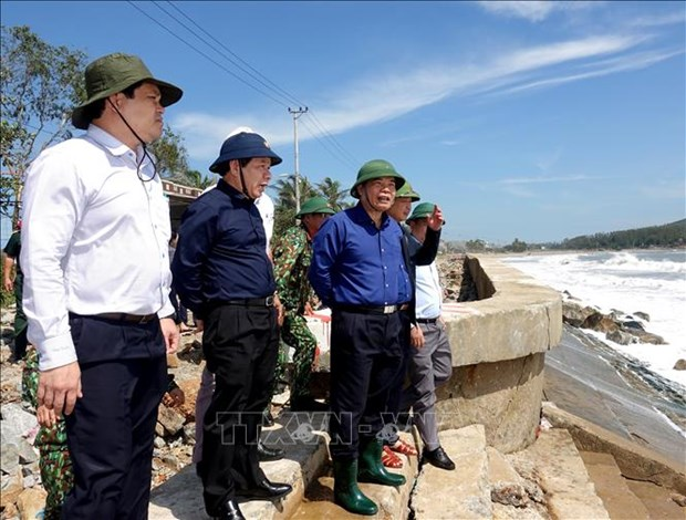 Natural disaster prevention committee monitors localities' recovery from Storm Molave hinh anh 1