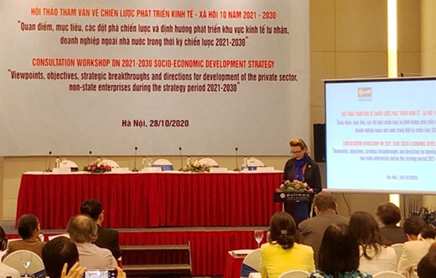 Private sector, non-State enterprises to be at heart of 10-year development strategy hinh anh 1