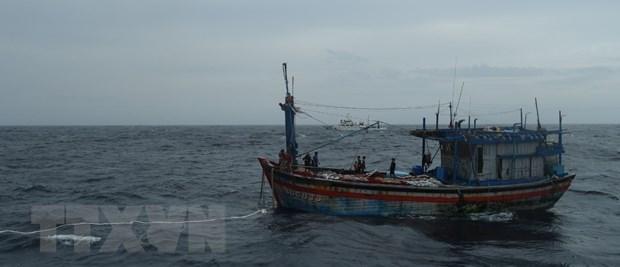 Three Binh Dinh fishermen adrift at sea saved hinh anh 1