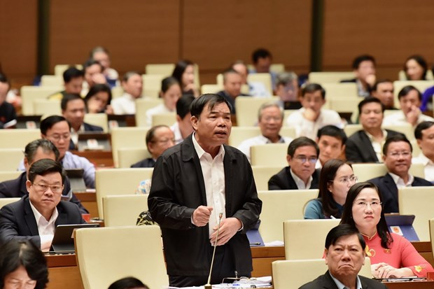 Forest protection on agenda at National Assembly's sitting hinh anh 1