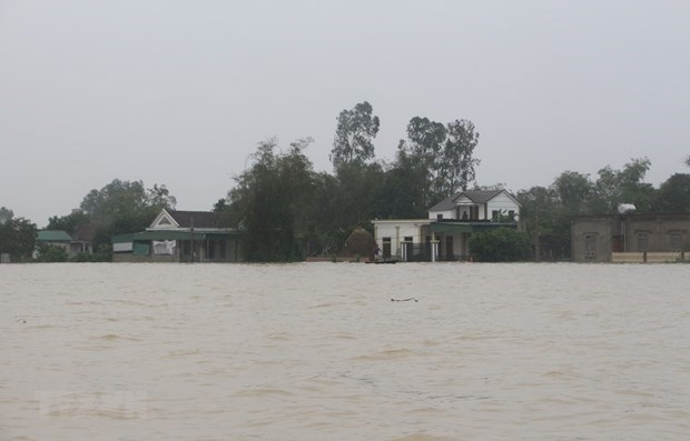 Storms, floods cause economic loss of over 730 million USD: Gov't report hinh anh 1