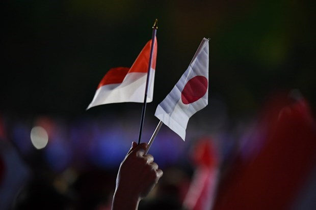 Japan, Indonesia intensify defence cooperation hinh anh 1