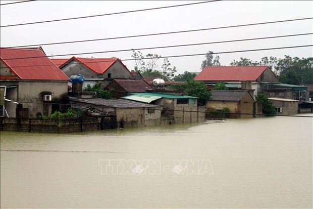 Netherlands to help Vietnam with 2.34 million USD flood aid package hinh anh 1