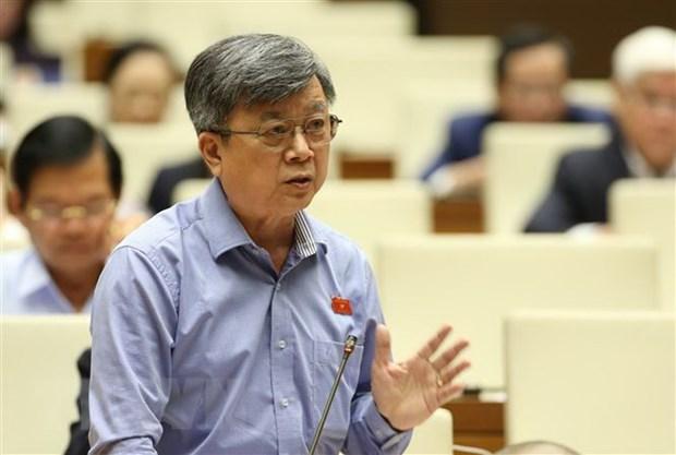 Legislator puts forth solutions to socio-economic development issues hinh anh 1