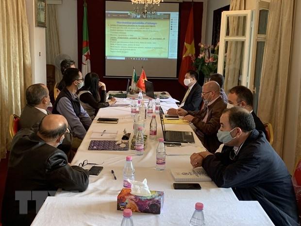 Vietnam, Algeria bolster trade, investment promotion hinh anh 1