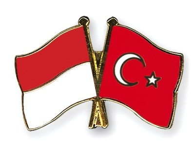 Indonesia pushes for faster negotiations of economic partnership pact with Turkey hinh anh 1