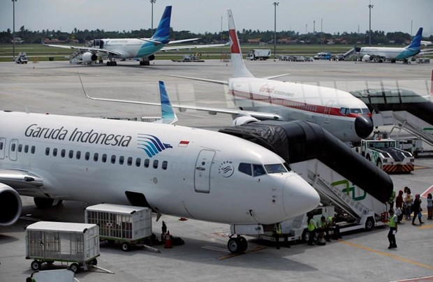 Indonesia to merge flag carrier and tourism companies hinh anh 1