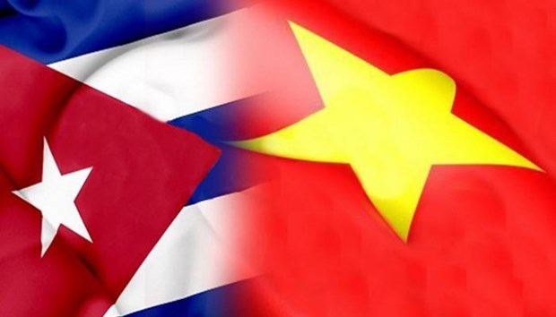 Event aims to enhance solidarity between Vietnamese and Cuban youths hinh anh 1