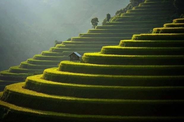 Mu Cang Chai among world's 50 most beautiful places hinh anh 1