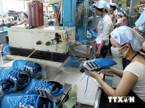 More firms established, resuming operation in October hinh anh 1