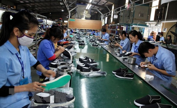 Leather, footwear exports predicted to recover in Q4 hinh anh 1