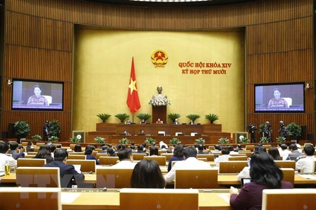 Cabinet members grilled at NA's 10th session hinh anh 1