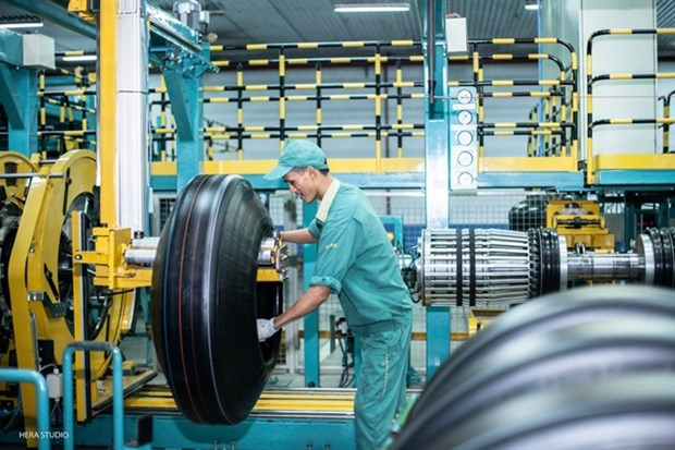 Local tyre producers suffer small impact from US tariff hinh anh 1