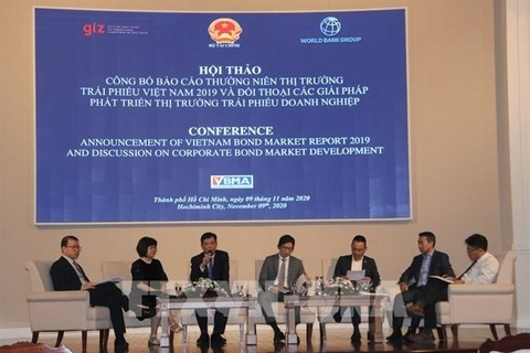 Ministry of Finance to issue green bonds in 2021 hinh anh 1