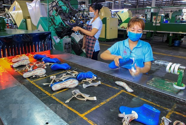 Binh Duong overfulfills yearly FDI attraction goal hinh anh 1