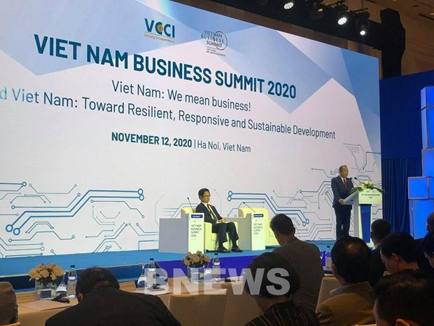 Business Summit highlights significance of digitalisation amidst pandemic hinh anh 1