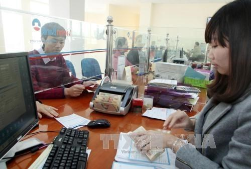 Reference exchange rate remains unchanged on Nov. 12 hinh anh 1