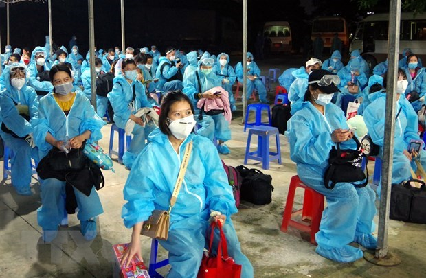 Vietnam sees no new COVID-19 cases on November 12 morning hinh anh 1