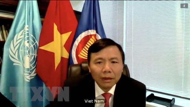 Five new judges elected to International Court of Justice hinh anh 1