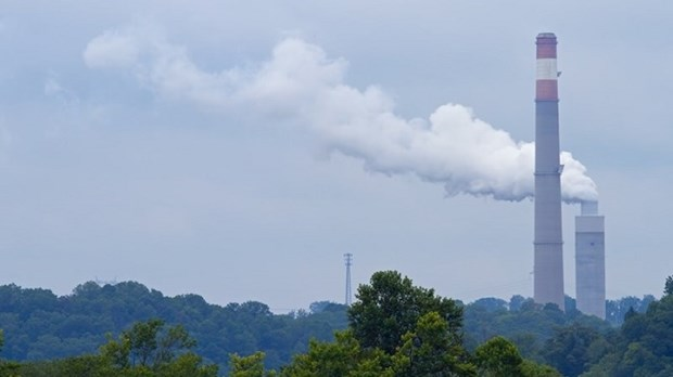 Greenhouse gas emissions to be cut by nine percent hinh anh 1