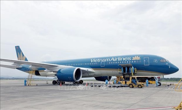 Over 340 Vietnamese citizens flown home from Japan hinh anh 1