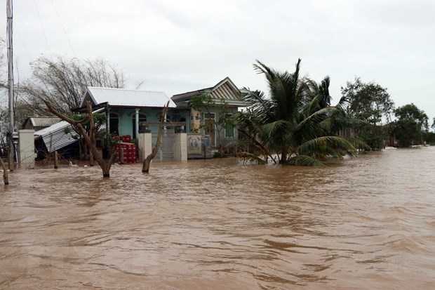 Disasters may cost Vietnam 1.5 pct of GDP annually hinh anh 1
