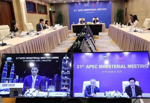 Vietnam attends 31st APEC Ministerial Meeting hinh anh 1